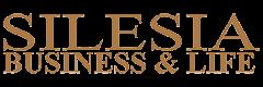 4dent - partner - silesia business